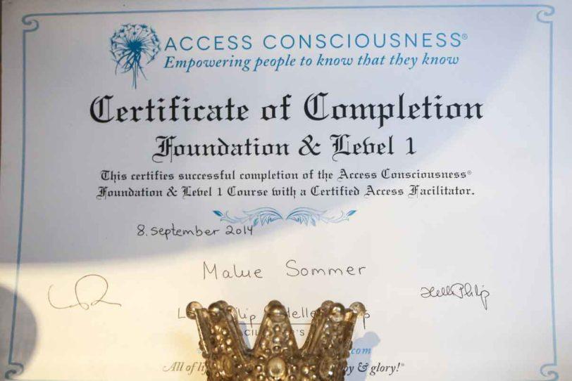 Access bevidsthed certifikat